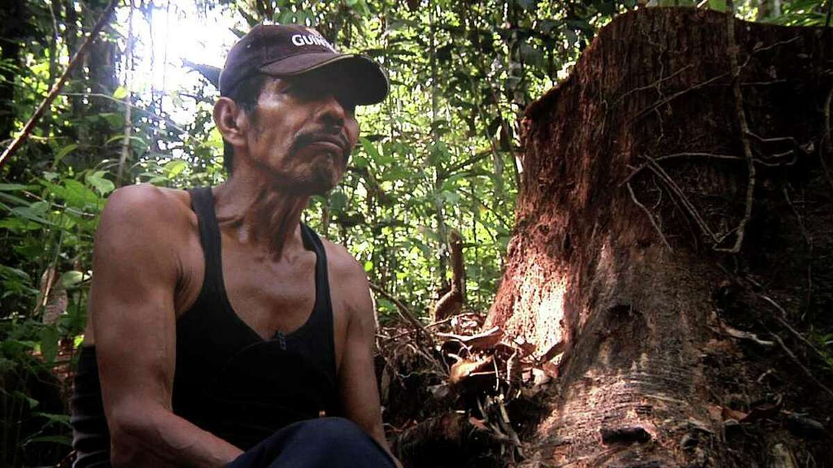 Amazonian shaman don Bechin walks through the rain forest in search of medicinal plants for his patients, in a scene from the film ìThe Sacred Science.î