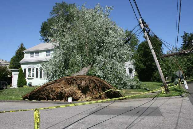 A tree sits on a telephone poll and a home on the corner of Eastern Pkwy and River Cliff in Milford in August. The tree went down during Tropical Storm Irene. Photo: B.K. Angeletti / Connecticut Post