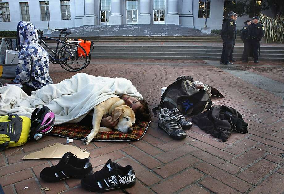 """A.J. Pendleton, cares for  """"Radar"""", on Sproul Plaza, who belongs to one of the protesters who were arrested early this morning on Thursday November 17, 2011 in Berkeley, Ca., after the Occupy Cal encampment on the steps of Sproul Hall was cleared out by UC Police. Photo: Michael Macor, The Chronicle"""