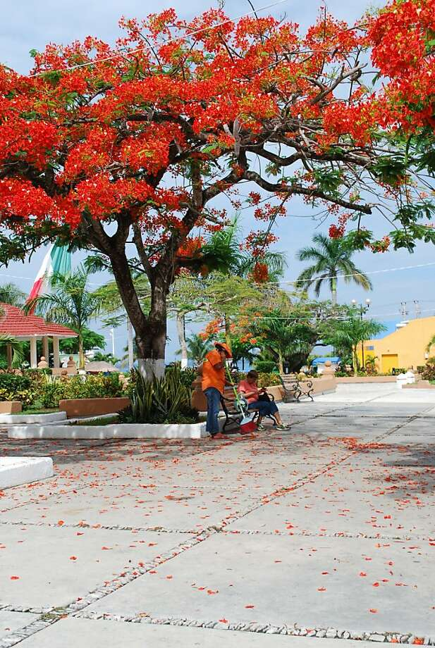 Family and community is an important part of the culture in Cozumel. The plaza is a place both locals and tourists enjoy. Photo: Maribeth Mellin, Special To SFGate