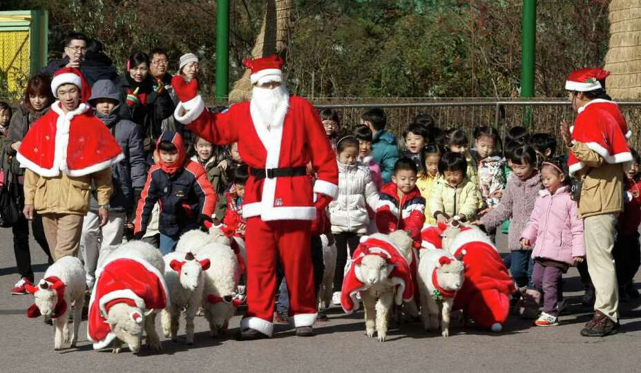 An amusement park employee dressed as Santa Claus walks sheep in the same costumes at the Everland a