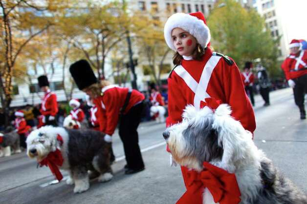 Members of the Old English Sheepdog Club march in the Macy's Holiday Parade on Friday in downtown Seattle. Crowds lined downtown streets to see the annual parade. Photo: JOSHUA TRUJILLO / SEATTLEPI.COM