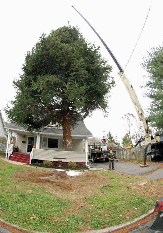 Workers saw down the 35-foot tree in front of Colin and Nicole Grotheer's home in Norwalk and then hoist it up over the power lines and onto a flatbed truck Monday morning. It was later hauled to South Norwalk where it will be decorated on Dec. 1 during the city's tree lighting ceremony. Photo: Jordan Osterhout