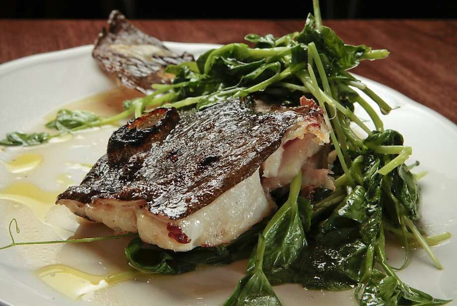 The grilled Halibut Collar at Locanda. Photo: John Storey, Special To The Chronicle