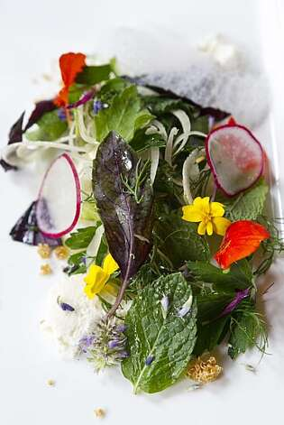 The herb salad is seen  at Sons & Daughters in San Francisco, Calif. on Thursday, September 16, 2010. Photo: Laura Morton, Special To The Chronicle
