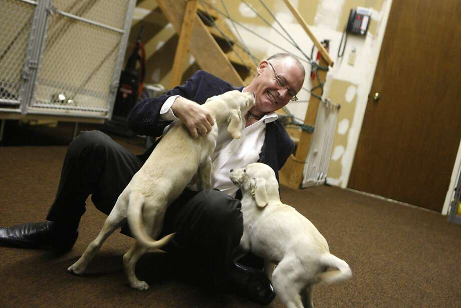 Mark Botten, Director of Pet Express, an animal transport business, plays with guide dog puppies in Brisbane, Calif., on Tuesday, Sept. 27, 2011. Photo: Dylan Entelis, The Chronicle