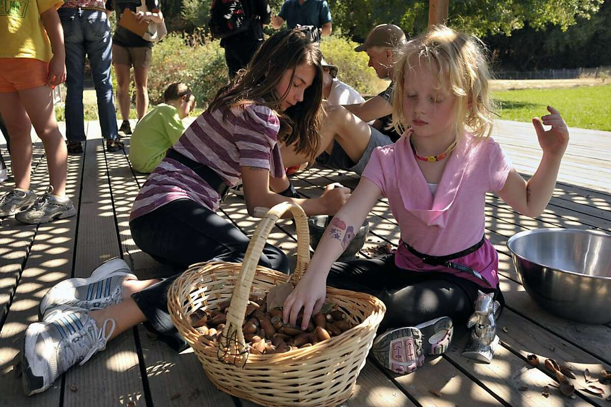 Jolie Lonner Egert is an ethnobiologist who has been studying and teaching the use of acorns for food. She teaches a class for adults and children at Hidden Villa Ranch in Los Altos to show people how to properly prepare the nuts for eating. Sisters Reagan Harwood, 10, left, and Monroe Harwood, 6, of Palo Alto break the shells and begin to crush the acorns into a powder.