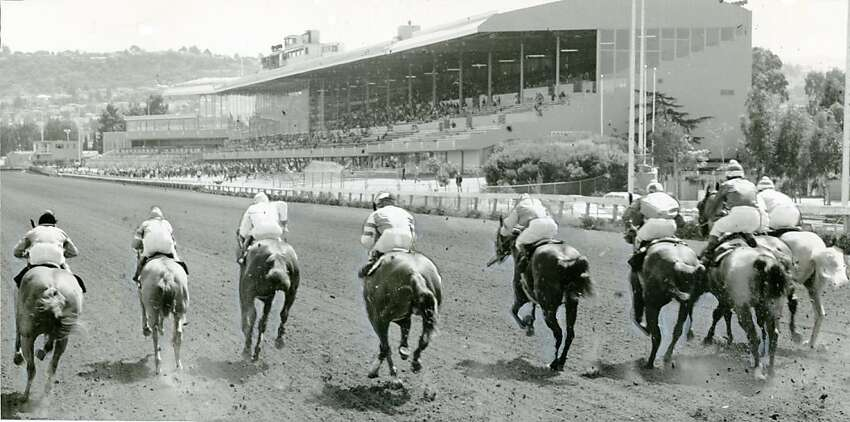 Myth: A jockey crushed by his horse during a race at Bay Meadows in 1936 was declared dead on the track, only to revive after being toe-tagged. Veracity: TRUE The remarkable tale of 19-year-old Ralph Neves is more than horse racing lore - it really happened. Neves was crushed by his falling mount and declared dead on the track. In a last ditch effort, a physician at the hospital gave him a shot of adrenaline. Neves sat up, ran out of the hospital and hailed a cab back to the track to finish out his day's mounts. He raced many more years and died in 1995.