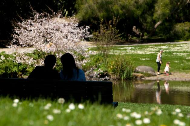 A couple sits on a bench in front of the blooming Cherry Blossom trees at the Botanical Gardens in Golden Gate Park on April 4, 2011 in San Francisco, Calif.  Photograph by David Paul Morris/Special to the Chronicle Ran on: 04-05-2011 A couple sit in front of blossoming cherry trees near a pond at the Botanical Garden in Golden Gate Park. Photo: David Paul Morris, Special To The Chronicle