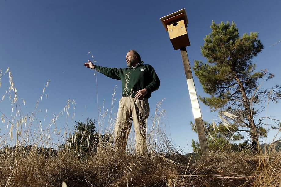 Ed Hulme,  Marin County Integrated Pest Management coordinator on Wednesday September 21, 2011, in San Rafael, Ca., near one of the newly installed owl boxes. Marin County Parks and the Marin County Integrated Pest Management Program, in partnership with Wildcare and the Hungry Owl Project, have installed seven owl boxes around the Marin Civic Center, in hopes of controlling the increasing rodent population in the area. Photo: Michael Macor, The Chronicle