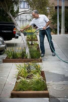 Michael Helquist, Special Events Coordinator at St. Cyprian's Episcopal Church, water's the church's sidewalk garden on Tuesday, Aug. 16, 2011 in San Francisco, Calif.  The garden was installed as part of the city's Grey2Green project.