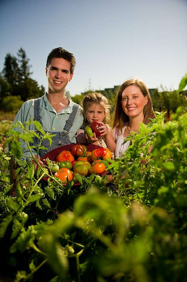 Jere and Emilee Gettle with their daughter Sasha Gettle, 3, pose with a variety of heirloom tomatoes including Yellow Brandy Wine, Cherokee Purple, Aunt Ruby German Green and Marbled Stripped at the Petaluma Bounty's Farm on September 4, 2011 in Petaluma, Calif. Photo: David Paul Morris, Special To The Chronicle