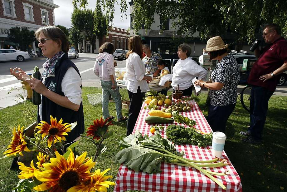 Julie Brand holds a fresh zucchini as her neighborês exchange their excess vegetables at the San Anselmo Garden Exchange, weekly crop swap in front of the San Anselmo Town Hall. The event is in its third year and takes place every Saturday morning between 9am and 10. Saturday August 20, 2011 Photo: Lance Iversen, The Chronicle