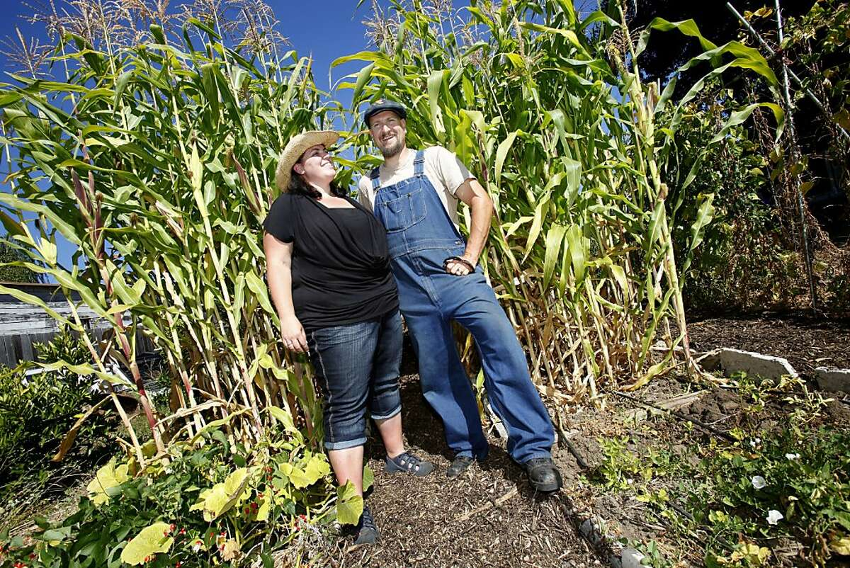 Rachel Hoff (left) and Tom Ferguson had a passion for gardening and wanted a large backyard. Rachel Hoff and Tom Ferguson are going a year without buying groceries, eating only what they grow in their backyard in Vallejo, Calif. or trade with other farmers.
