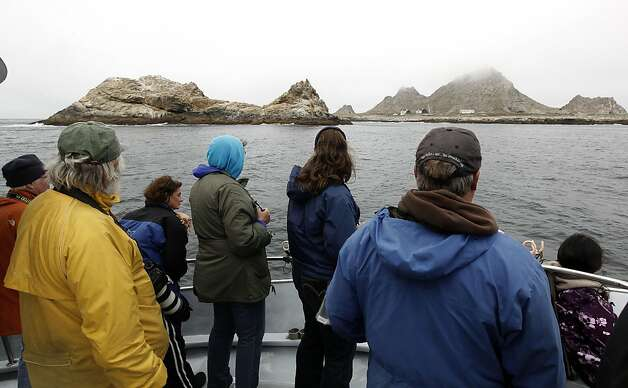 "Visitors aboard the Oceanic Society boat, ""Salty Lady"" observe the wildlife off of South East Farallon Island, 29 miles off the coast of San Francisco, Ca., on Saturday August 27, 2011. The Gulf of the Farallones boast some of the richest marine wildlife habitat, and these waters are some of the most heavily trafficked shipping lanes in the country. Over the past 10 years, ship strikes have become a major cause of death for blue whales and other large baleen whales, and ship strikes also account for one-third of the whale strandings Last year several endangered whales feeding beyond the Golden Gate were struck and killed in the shipping lanes. Photo: Michael Macor, The Chronicle"