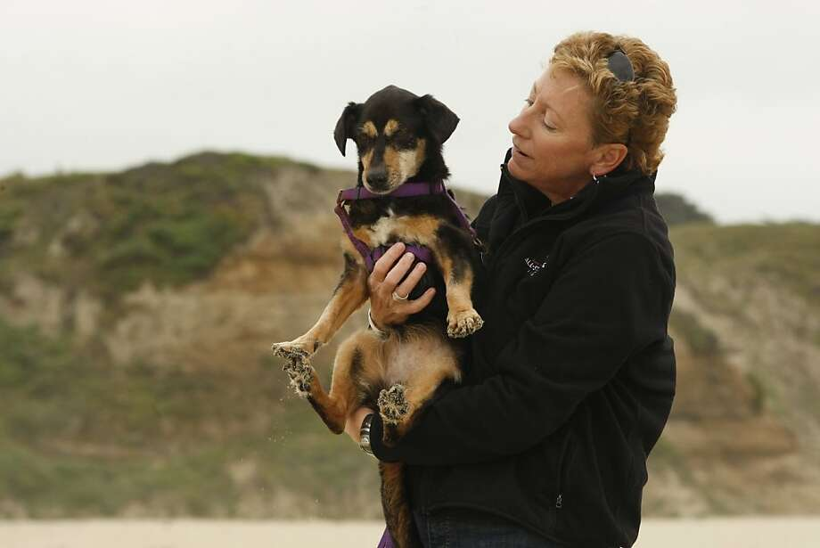 Laurie Reinelt holds her 16-year old dog Sam on a beach in Half Moon Bay Calif, on Saturday, May 7, 2011. Photo: Alex Washburn, The Chronicle