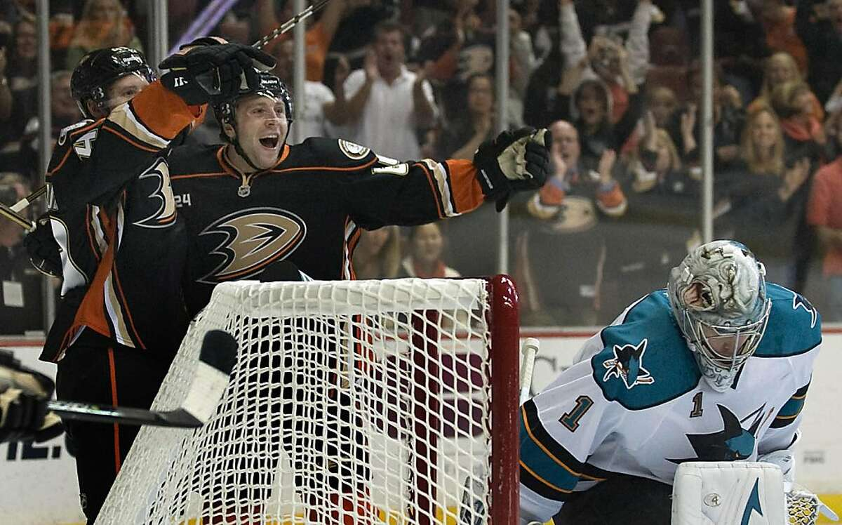 The Anaheim Ducks celebrate a first-period goal by Maxime Macenauer against the San Jose Sharks at the Honda Center in Anaheim, California, on Friday, October 14, 2011. (Michael Goulding/Orange County Register/MCT)