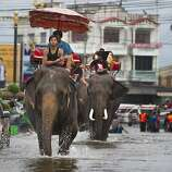 AYUTTHAYA, THAILAND - OCTOBER 10:  Thai mahouts ride their elephants through the flooded streets October 10, 2011 in Ayutthaya, Thailand.  Around 200 factories closed in the central Thai province of Ayutthaya because of flooding, which is posing a threat to Bangkok as well. Over 260 people have died in flood-related incidents since late July according to the Department of Disaster Prevention and Mitigation. Some areas of the country are experiencing the worst flooding in 50 years, mainly in the centre, north and northeast. (Photo by Paula Bronstein /Getty Images)