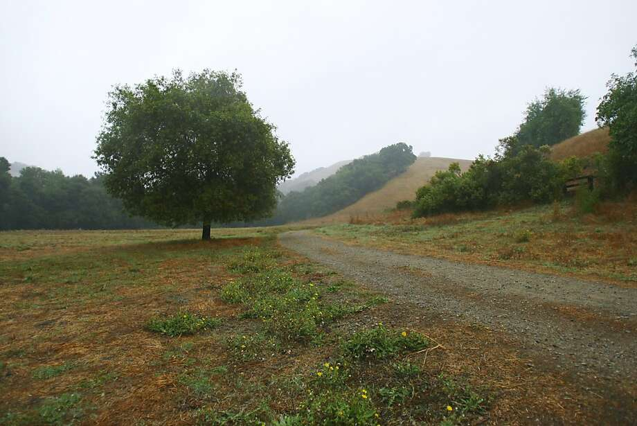 Briones Regional Park offers trails and hiking in Lafayette, Calif., on Thursday, Nov. 3, 2011. Photo: Thomas Webb, The Chronicle