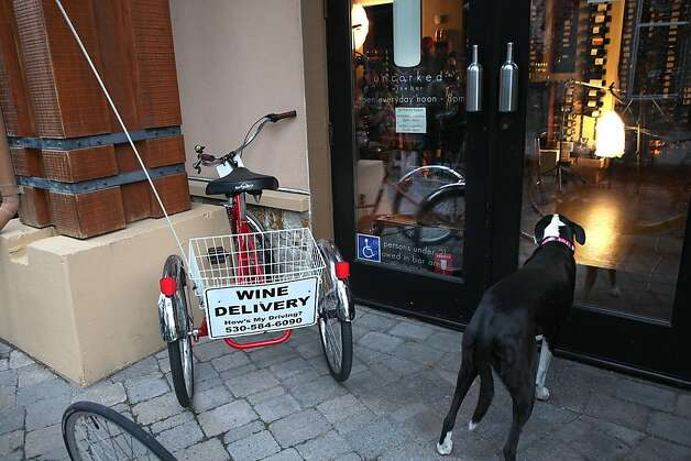 A trike available for wine delivery parked next to the front door of Uncorked in Squaw Valley , Calif., as a dog waits for his keeper on Wednesday, October 12, 2011. Photo: Liz Hafalia, The Chronicle