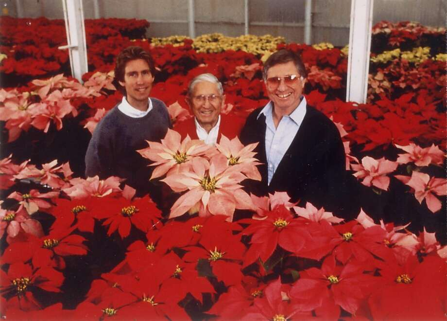 From left, Poinsettia moguls Paul Ecke III, Paul Ecke Sr., and Paul Ecke Jr. show off some of their spectacular holiday wares. Photo: Courtesy Of The Ecke Ranch