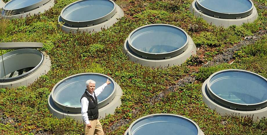 Frank Almeda, a senior curator at the California Academy of Sciences, discusses features of the building's living roof on Friday, Sept. 2, 2011, in San Francisco. Photo: Noah Berger, Special To The Chronicle