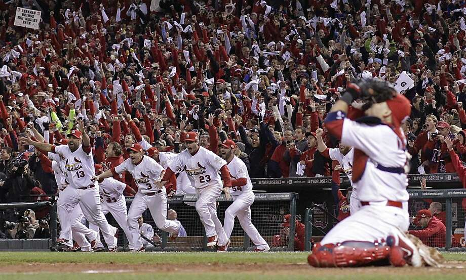 The St. Louis Cardinals celebrate after Texas Rangers' David Murphy flies out to end Game 7 of baseball's World Series Friday, Oct. 28, 2011, in St. Louis. The Cardinals won 6-2 to win the series. (AP Photo/Matt Slocum) Photo: Matt Slocum, AP