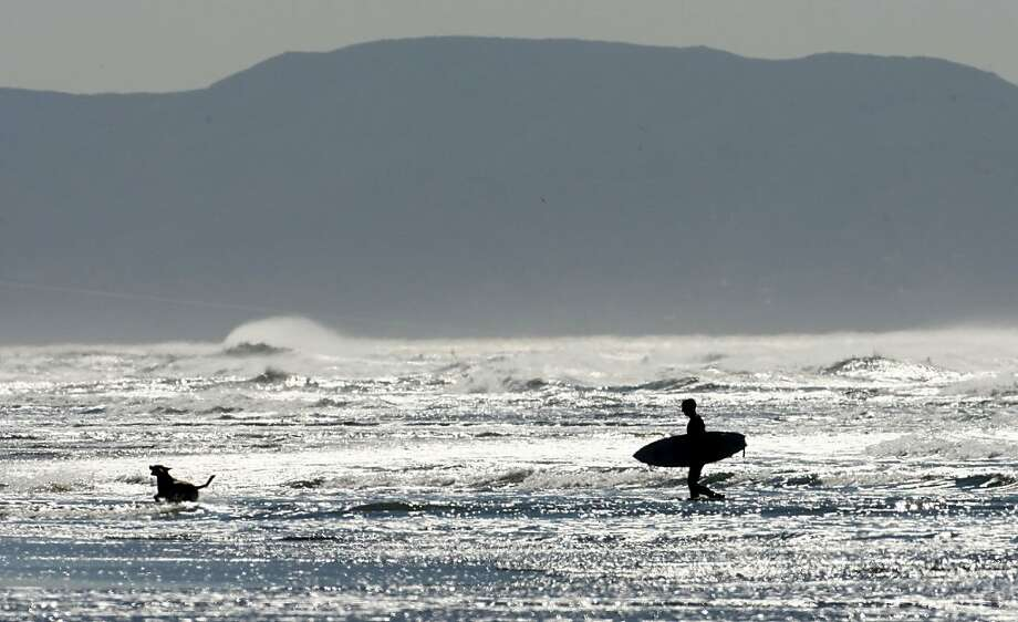 Indian summer weather forces many with dogs and surfboards to Ocean Beach on Wednesday October 22, 2008. Photo: Frederic Larson, The Chronicle