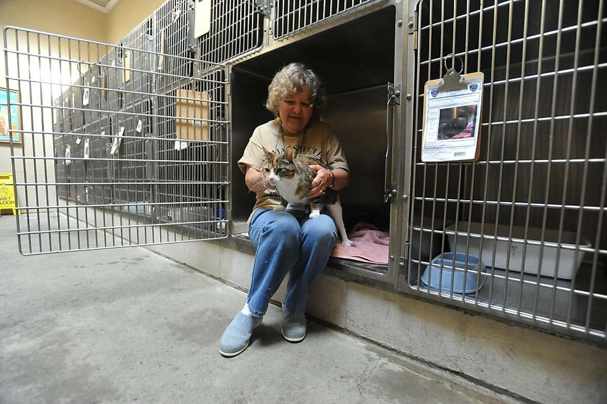 Betty Partlow, a volunteer for 15 years visits with Lucy at the Alameda Animal Shelter on Tuesday, October 25, 2011. Officials plan to announce the shelter is closing later in the day.