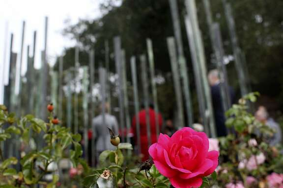 Roses bloom in the Firestorm Memorial Garden, Thursday October 20, 2011, where a ceremony in head to commemorate the 20th anniversary of the 1991 Oakland Firestorm  in Oakland, Calif. The flowers surround the FIrestorm Memorial Garden Sculpture that was created by artist Gail Fredell.