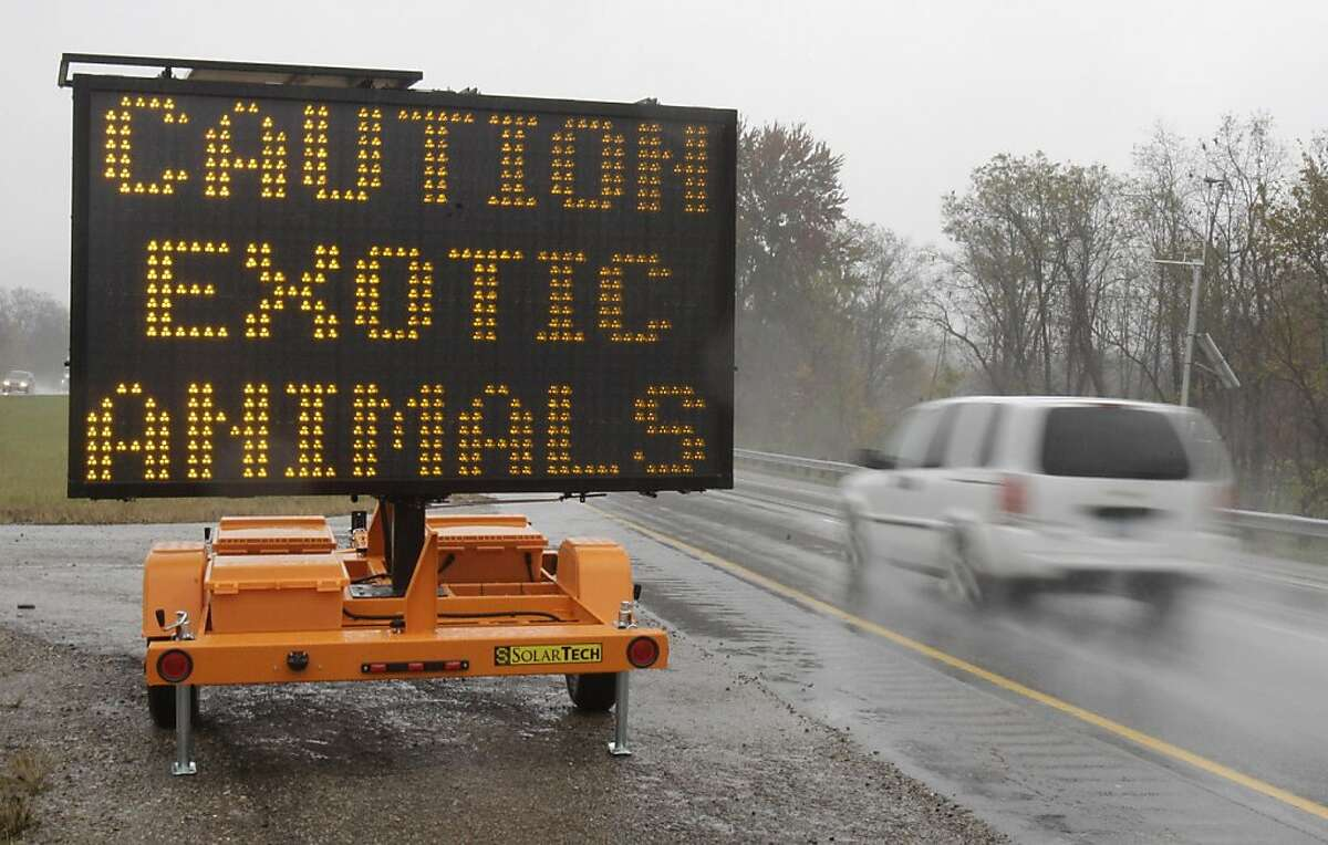 A sign warning motorists that exotic animals are on the loose rests on I-70 Wednesday, Oct. 19, 2011, near Zanesville, Ohio. Police with assault rifles stalked a mountain lion, grizzly bear and monkey still on the loose after authorities said their owner apparently freed dozens of wild animals and then killed himself. (AP Photo/Tony Dejak)