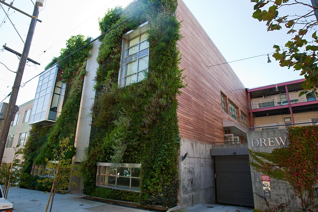 Vertical Garden At Drew School S F Sfgate