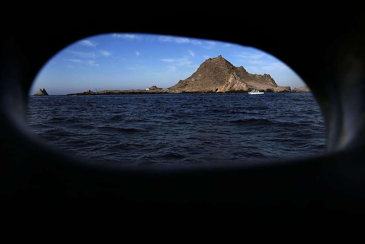South east Farallon Island, on Wednesday October 12, 2011, off the coast of San Francisco, Ca. Efforts to control the non-native house mice problem in the Farallon Islands have failed. Officials say the mouse population has grown so large that they have altered the ecology of the island.
