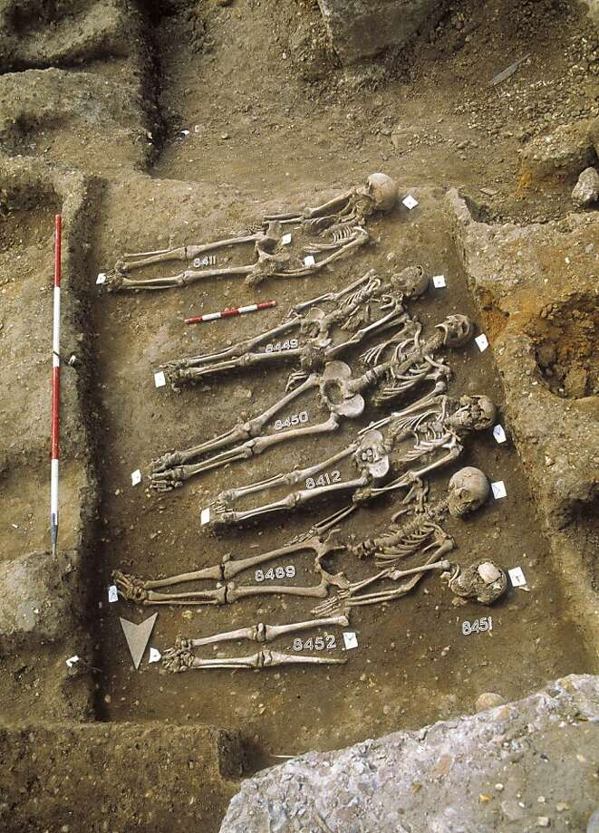 This undated handout photo provided by Museum of London Archaeology shows skeletons in the East Smithfield Cemetery in London, where Black Death victims were buried in the 13th Century. Scientists used skeletons from this graveyard to decode the genome of the plague. (AP Photo/Museum of London Archaeology) Photo: AP