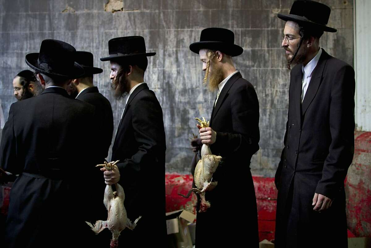 In this picture taken Wednesday, Oct. 5, 2011, ultra-Orthodox Jewish men hold chicken after it was slaughtered as part of the Kaparot ritual in which it is believed that one transfers one's sins from the past year into the chicken in Bnei Brak, an ultra-Orthodox town near Tel Aviv, Israel. For generations, ultra-Orthodox Jews have marked the arrival of Yom Kippur, Judaism's holiest day, by waving live chickens over their heads before slaughtering the birds to atone for their sins. But in a departure from centuries of tradition, a small but growing group of religious leaders are decrying the practice as animal abuse. These rabbis say the practice, along with the cruel conditions they are kept in, violates a biblical injunction against animal abuse. (AP Photo/Oded Balilty)