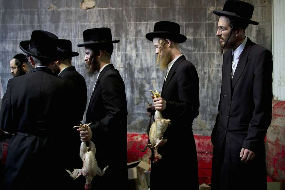 In this picture taken Wednesday, Oct. 5, 2011, ultra-Orthodox Jewish men hold chicken after it was slaughtered as part of the Kaparot ritual in which it is believed that one transfers one's sins from the past year into the chicken in Bnei Brak, an ultra-Orthodox town near Tel Aviv, Israel. For generations, ultra-Orthodox Jews have marked the arrival of Yom Kippur, Judaism's holiest day, by waving live chickens over their heads before slaughtering the birds to atone for their sins. But in a departure from centuries of tradition, a small but growing group of religious leaders are decrying the practice as animal abuse. These rabbis say the practice, along with the cruel conditions they are kept in, violates a biblical injunction against animal abuse. (AP Photo/Oded Balilty) Photo: Oded Balilty, AP