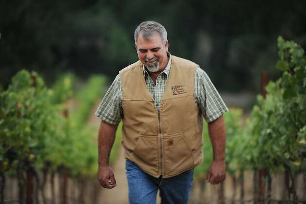 Paul Ardzrooni of Ardzrooni Vineyard Management at the 8-acre Kiser vineyard in Philo, California in the Anderson Valley. Ardzrooni manages the vineyard for winemaker Wells Guthrie of Copain Wines located in Healdsburg. September 30, 2011 Photo: Erik Castro, Special To The Chronicle