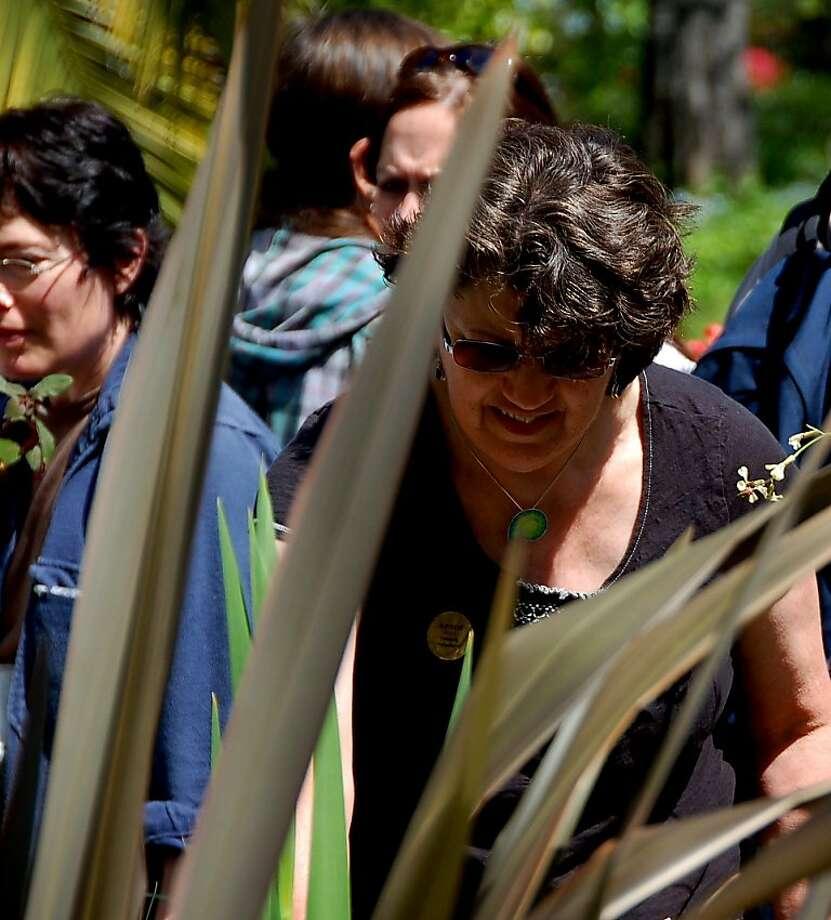 Lakeshore Avenue Free Neighborhood Plant Exchange Photo: Odette Pollar