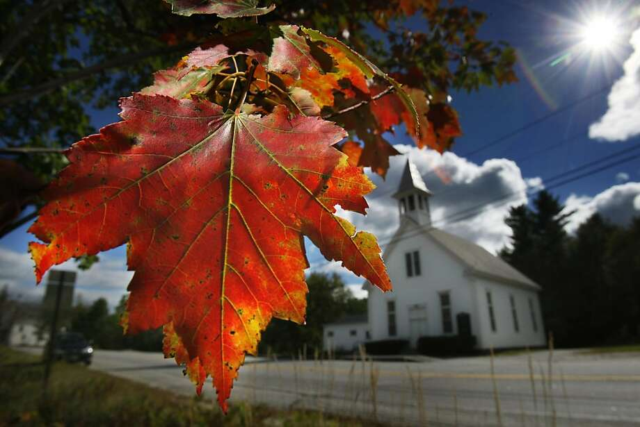 A maple tree shows it's fall colors, Friday, Sept. 17, 2010, in Woodstock, Maine.  A vast network of county foresters, volunteers and others contribute their observations to state tourism officials, who in turn work up ``foliage forecasts'' published online and elsewhere to let leaf-peepers know where to find the best  fall foliage. (AP Photo/Robert F. Bukaty)  Ran on: 10-03-2010 Online &quo;foliage forecasts&quo; let visitors know where to find the brightest colors, like this Maine maple. Photo: Robert F. Bukaty, AP