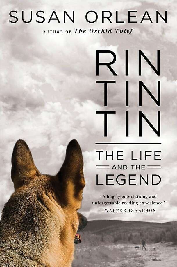 """In this book cover image released by Simon and Schuster, """"Rin Tin Tin: The Life and the Legend,"""" by Susan Orlean, is shown. (AP Photo/Simone and Schuster)  Ran on: 10-02-2011 Photo caption Dummy text goes here. Dummy text goes here. Dummy text goes here. Dummy text goes here. Dummy text goes here. Dummy text goes here. Dummy text goes here. Dummy text goes here.###Photo: litpicks02_ph1316563200Simon and Schuster###Live Caption:In this book cover image released by Simon and Schuster, """"Rin Tin Tin: The Life and the Legend,"""" by Susan Orlean, is shown.###Caption History:In this book cover image released by Simon and Schuster, """"Rin Tin Tin: The Life and the Legend,"""" by Susan Orlean, is shown. (AP Photo-Simone and Schuster)###Notes:###Special Instructions:AP PROVIDES ACCESS TO THIS PUBLICLY DISTRIBUTED HANDOUT PHOTO PROVIDED BY SIMON AND SCHUSTER FOR EDITORIAL PURPOSES ONLY. Ran on: 10-02-2011 Photo caption Dummy text goes here. Dummy text goes here. Dummy text goes here. Dummy text goes here. Dummy text goes here. Dummy text goes here. Dummy text goes here. Dummy text goes here.###Photo: litpicks02_ph1316563200Simon and Schuster###Live Caption:In this book cover image released by Simon and Schuster, """"Rin Tin Tin: The Life and the Legend,"""" by Susan Orlean, is shown.###Caption History:In this book cover image released by Simon and Schuster, """"Rin Tin Tin: The Life and the Legend,"""" by Susan Orlean, is shown. (AP Photo-Simone and Schuster)###Notes:###Special Instructions:AP PROVIDES ACCESS TO THIS PUBLICLY DISTRIBUTED HANDOUT PHOTO PROVIDED BY SIMON AND SCHUSTER FOR EDITORIAL PURPOSES ONLY. Photo: Simone And Schuster, AP"""