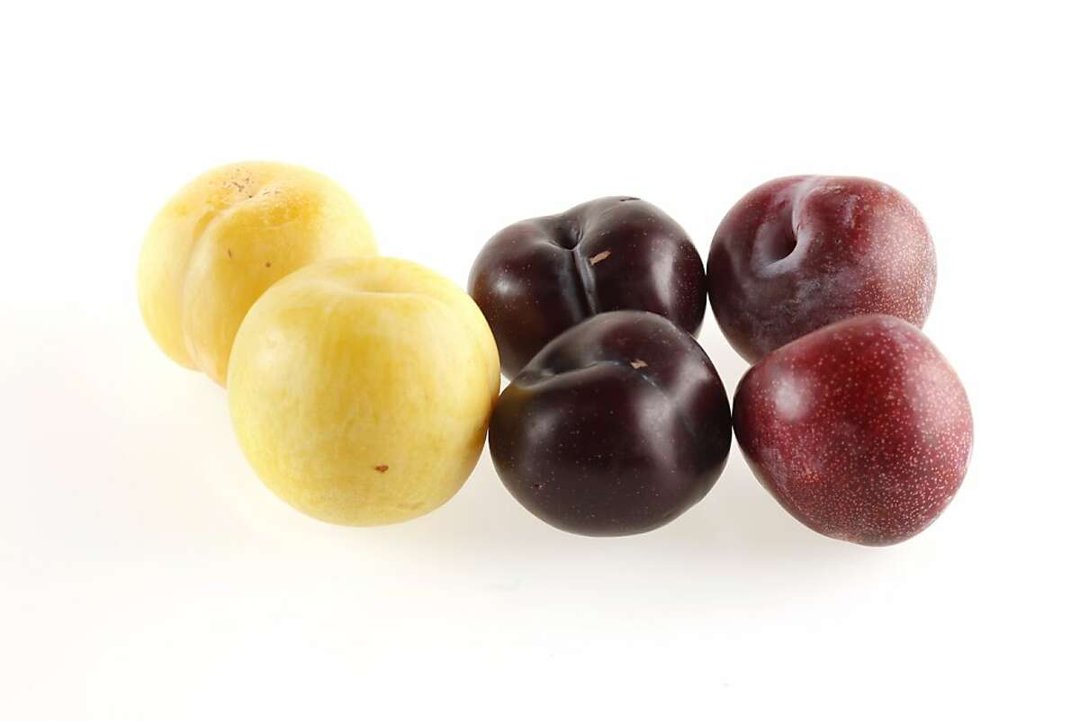 Different plum varieties as seen in San Francisco, California, on Wednesday, August 17, 2011.
