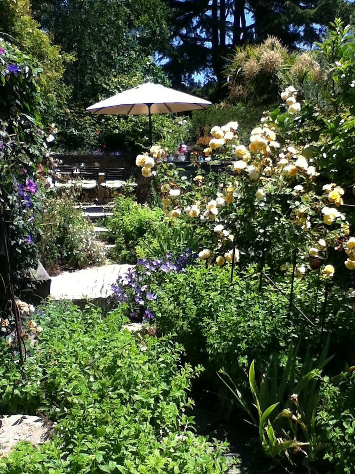 Laurie Stern's backyard in El Cerrito is home to bees that help create the raw materials for her line of moisturizers and perfumes.