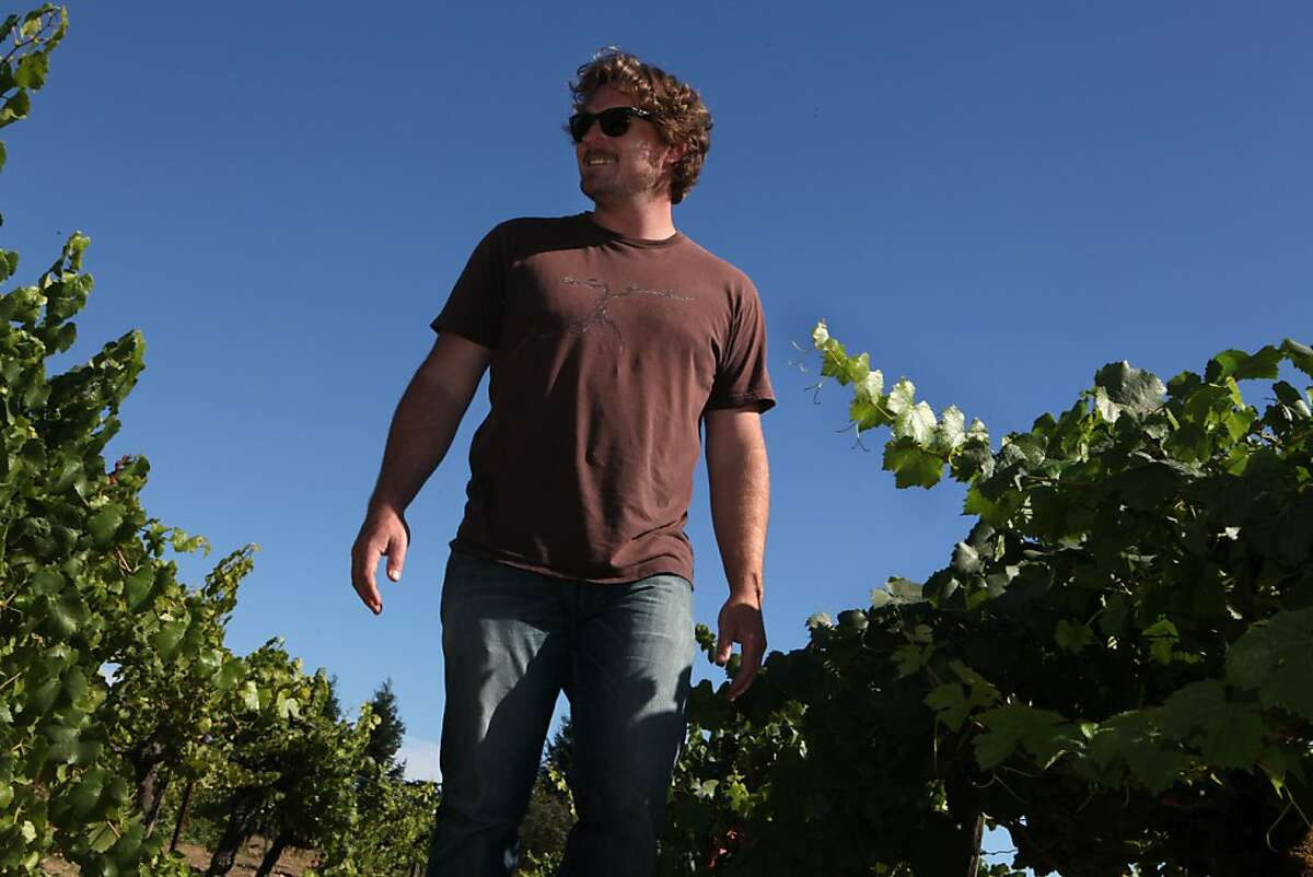 Morgan Twain-Peterson who runs Compagni Portis checks the sugar content of the different variety of grapes in his vineyard in Sonoma Calif., on August 17, 2011.