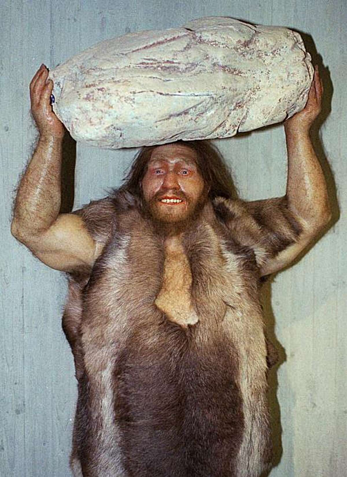 FILE - This Oct. 1996 file photo shows a replica of a Neanderthal man at the Neanderthal museum in Mettmann, western Germany. According to research reported in the Friday, May 6, 2010 edition of the journal Science, between 1 percent and 4 percent of genes in people from Europe and Asia trace back to Neanderthals. (AP Photo/Heinz Ducklau, file) HOLD FOR RELEASE AT 2 P.M. EDT. THIS PHOTO MAY NOT BE PUBLISHED, BROADCAST OR POSTED ONLINE BEFORE 2 P.M. EDT
