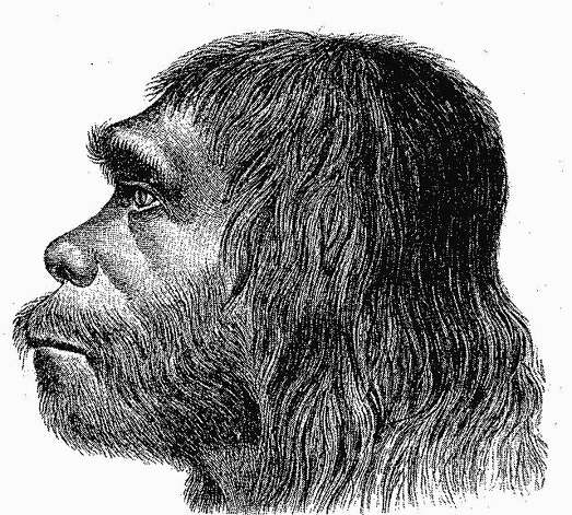 First reconstruction of Neanderthal man Photo: Ther Neanderthaler Fund