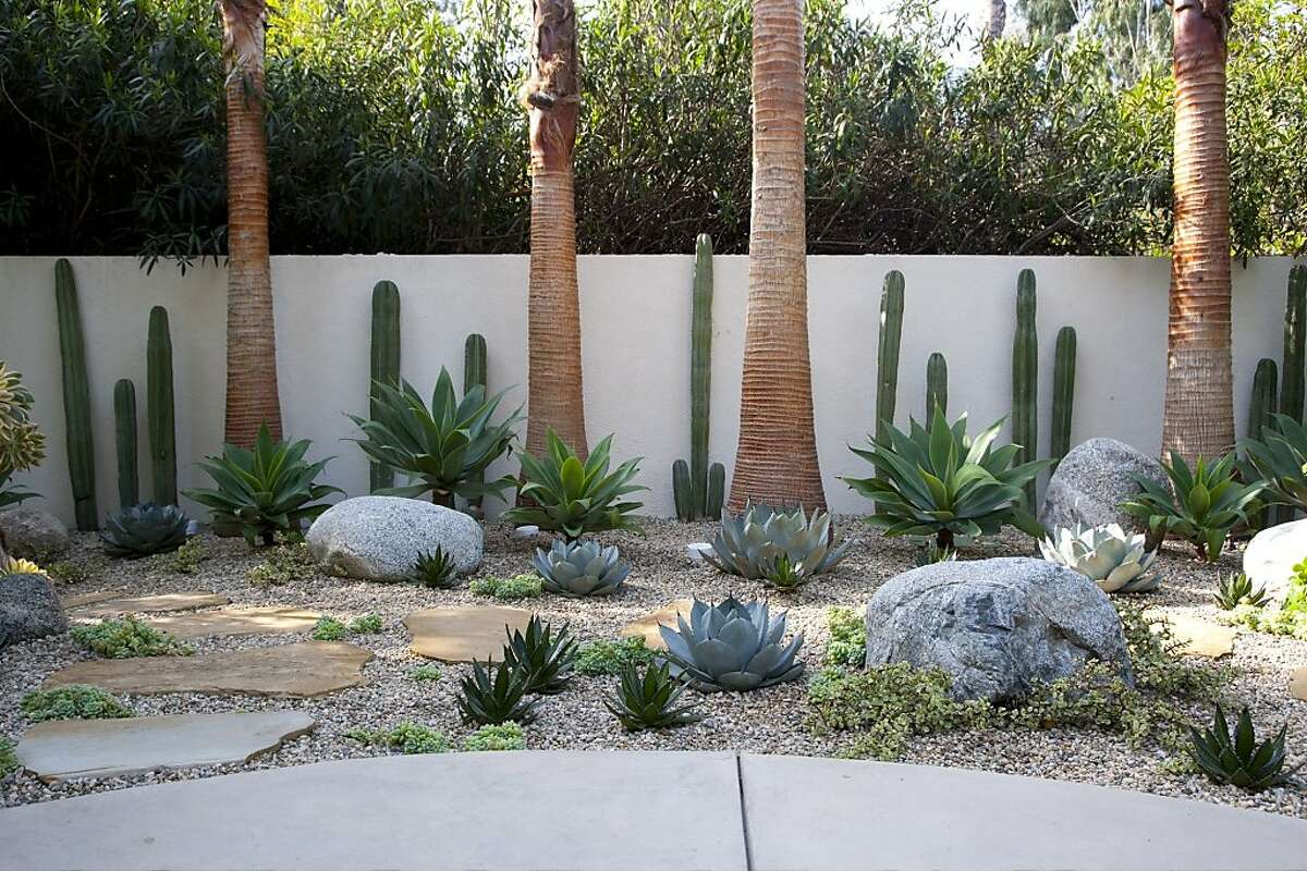 Agaves and other succulents are mainstays of this modernistic rock and gravel garden.