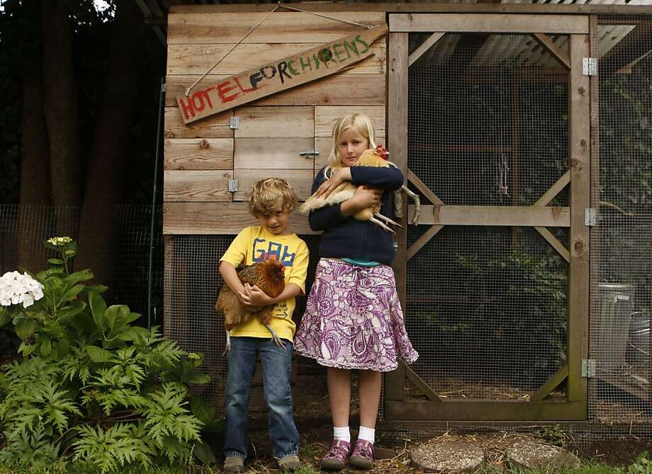 Roan, 6, and Elsa Rafter, 9, pose with their chickens Chickee-Chickee and Sunshine in front of their Chicken Coupe on Friday, July 15, 2011 in San Francisco, Calif. The Rafter's are part of 4-H. 4-H is a youth development organization that offers animal science and agricultural programs kids ages 9-19. Photo: Michelle Terris, The Chronicle