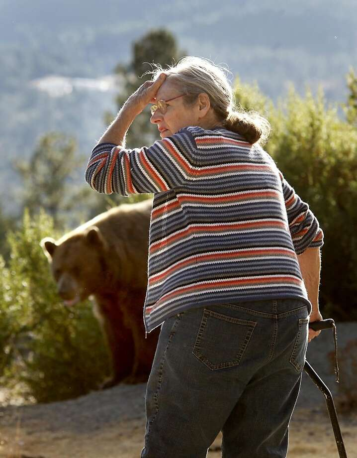 Lynne Gravier is worried about the physical health of the bear she finds on her property. Lynne Gravier, a Mendocino County woman who has been feeding bears for many years, had her home raided by state Fish and Game officials and has had to vacate her place above Laytonville, Calif. Ran on: 09-27-2010 Lynn Gravier has been feeding bears on her Mendocino County property for many years. Ran on: 09-27-2010 Lynn Gravier has been feeding bears on her Mendocino County property for many years. Ran on: 09-27-2010 Lynn Gravier has been feeding bears on her Mendocino County property for many years. Ran on: 09-27-2010 Lynn Gravier has been feeding bears on her Mendocino County property for many years. Photo: Brant Ward, The Chronicle