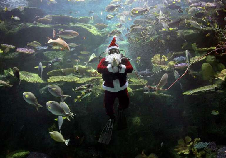 A worker dressed as Santa Claus greets spectators during an aquarium show in Bangkok, Thailand Frida
