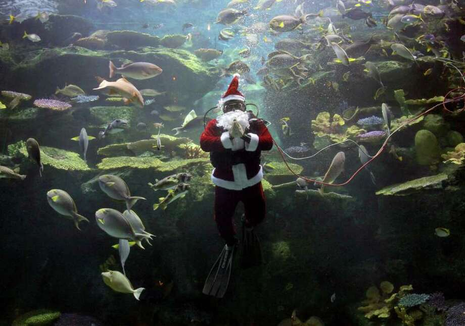 A worker dressed as Santa Claus greets spectators during an aquarium show in Bangkok, Thailand Friday, Dec. 2, 2011. Photo: Apichart Weerawong, Associated Press / AP